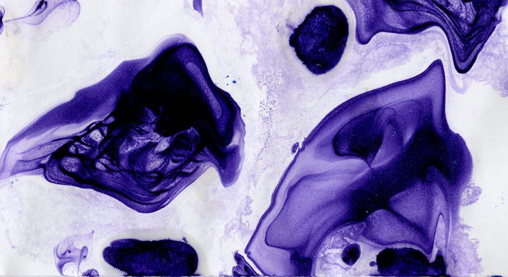 marbled paper purple